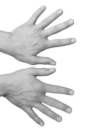 handen-zw-w-verticaal